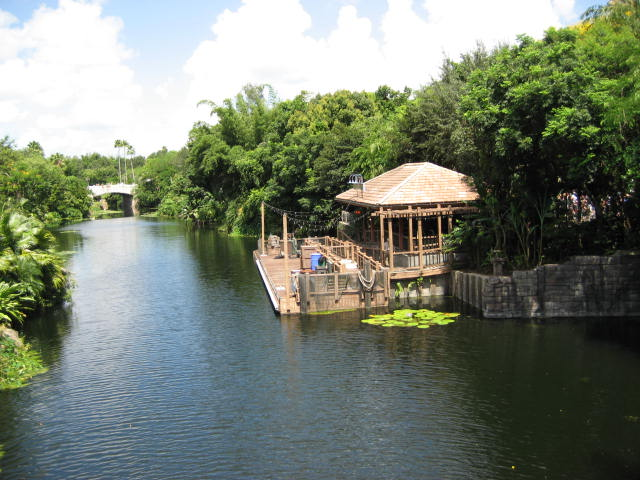 Discovery Island Trails Animal Kingdom Vacation Pictures