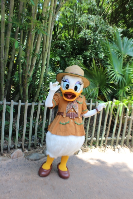 daisy duck discovery island trails animal kingdom vacation pictures disney world live suchart